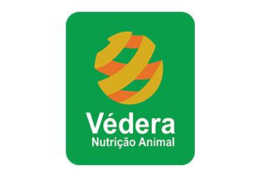 Vedera