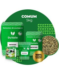Sementes De Grama Batatais - Embalagem Com 5kg - Grama Para Jardim, Campo De Futebol, Campo De Golfe